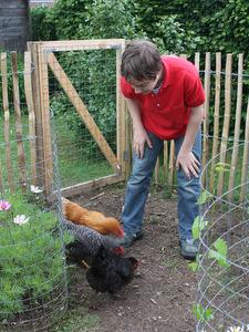 Comment chasser les poules de mon jardin - Comment eloigner les chats de mon jardin ...